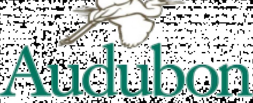 Audubon-NY