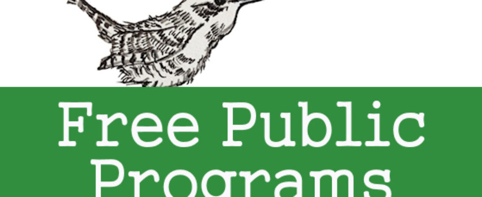 Blog-Public-Programs-Header