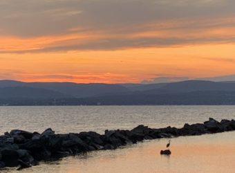 Sunset-and-heron-8-20