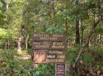 Brinton Brook sign
