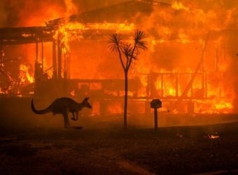 Australia-Burning-NYTIMES