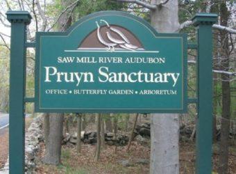 Pruyn-Sign